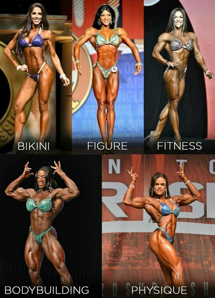 Picture college of female body builders