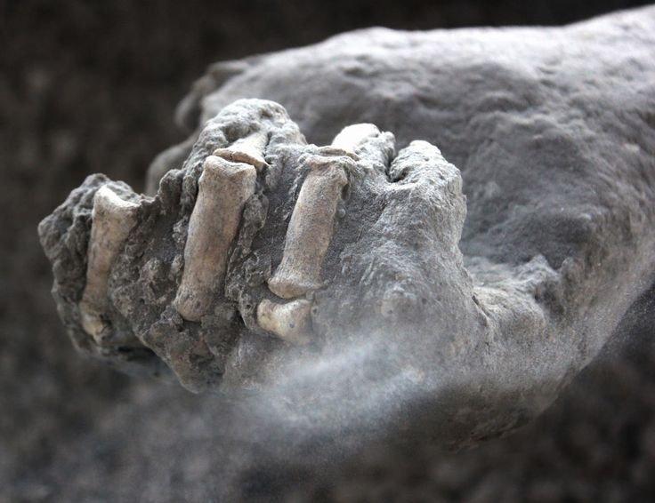 Pompeii mummies